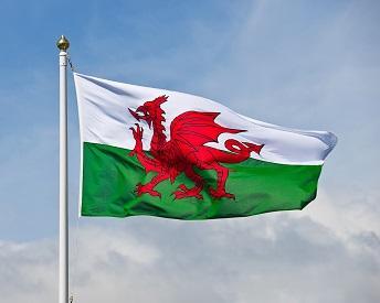 ケルト文化に浸るならここ!注目のイギリス留学スポット