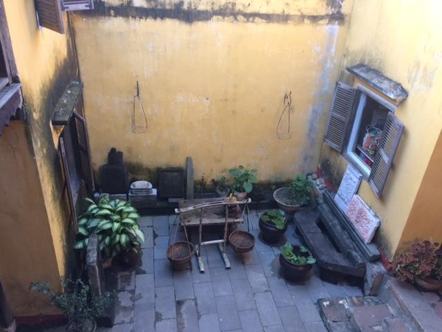 中庭の風景
