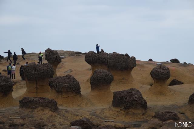 奇形岩たち