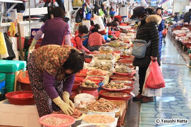 泗川の三千浦港にある龍宮市場。水揚げされたばかりの魚介が並ぶ