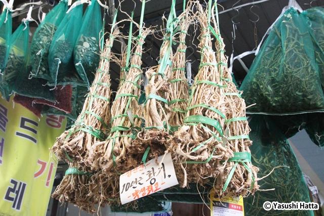 希少な10年物ファンギ。栽培が長いほど高い薬効を持つとされる