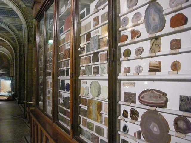 鉱石の標本が並ぶ廊下