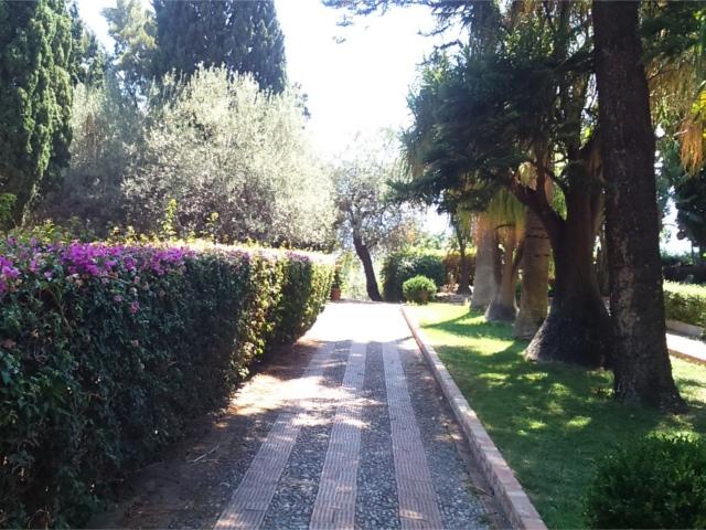市民公園 花と小道