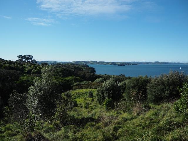 自然豊かなモツイへ島