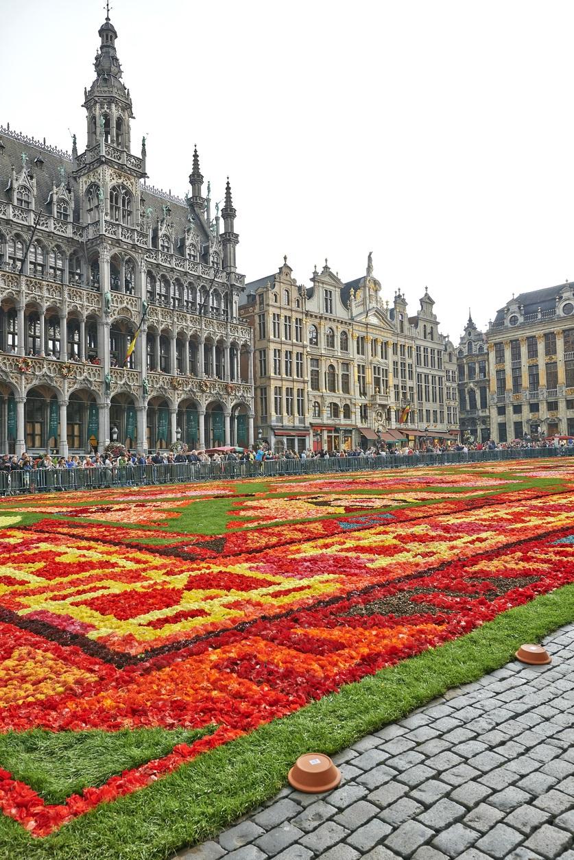 ベルギー 花のじゅうたん
