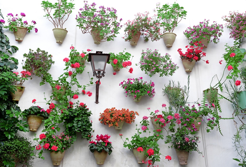 スペイン コルドバ パティオ 花