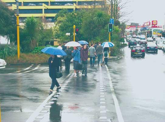 雨のニュージーランド