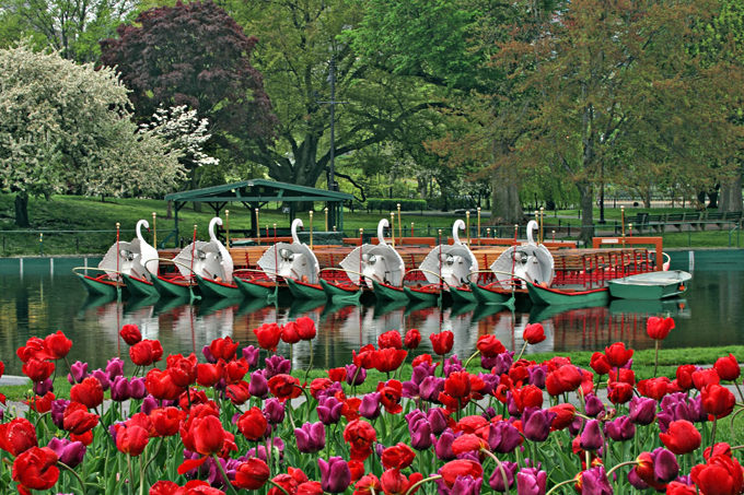春のボストン