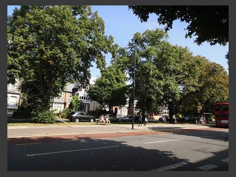学校の前の通り