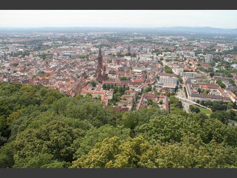 近隣の山から望む歴史ある街フライブルクの景色