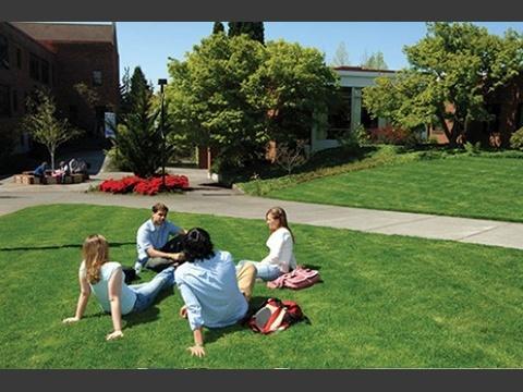 芝生で寛ぐ学生たち