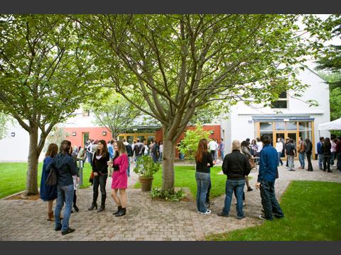 校内庭園エメラルドガーデンの桜の木