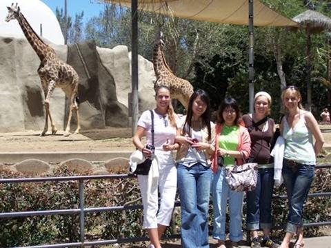 サンディエゴ動物園は世界でも有名な動物園です。